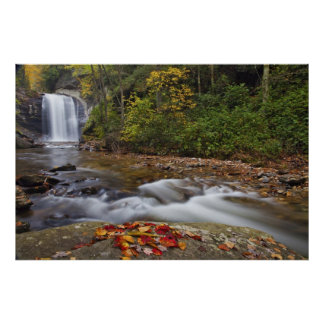Looking Glass Falls in the Pisgah National Poster