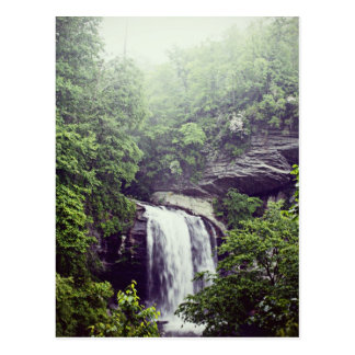 Looking Glass Falls in the Rain Postcard