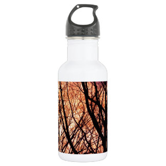 Looking Into The Forest Light Stainless Steel Water Bottle
