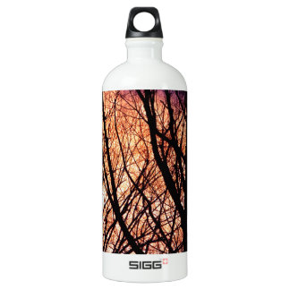 Looking Into The Forest Light Water Bottle
