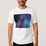Looking Inward - Amethyst & Azure Mystery T-Shirt