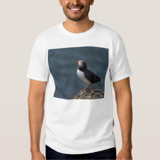 Looking out to Sea Puffin T-Shirt