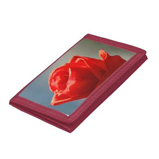 Looking the rose trifold wallet