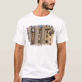 Looking through columns of the Pantheon with T-Shirt