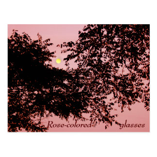 Looking through Rose-colored Glasses Postcard