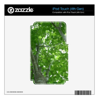 Looking through the Treetops Decals For iPod Touch 4G