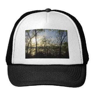 Looking thru the trees trucker hat