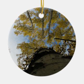 Looking up an Aspen Trunk Ceramic Ornament