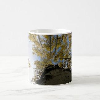 Looking Up An Aspen Trunk Coffee Mug