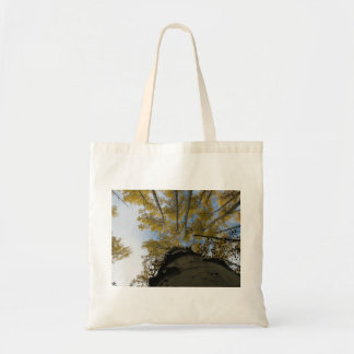 Looking up an Aspen Trunk Tote Bag
