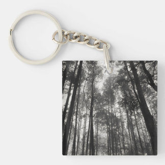 Looking Up at Tall Skinny Trees in Black & White Keychain