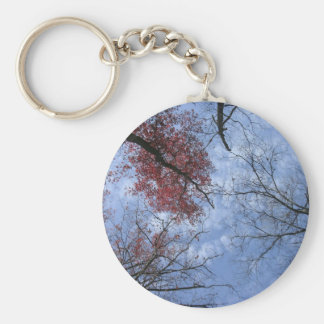 Looking Up! Keychain