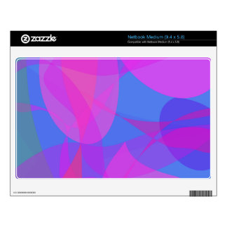 Looking Up Skins For Netbooks