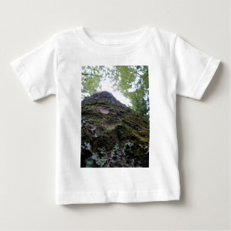 Looking Up the Kauri Baby T-Shirt