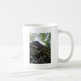 Looking Up the Kauri Coffee Mug