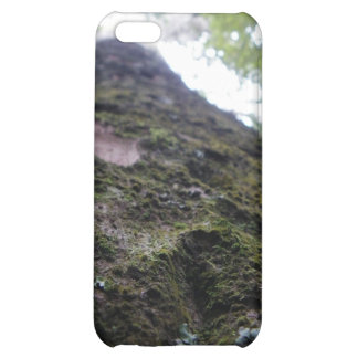 Looking Up the Kauri iPhone 5C Cover