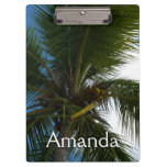 Looking Up to Coconut Palm Tree Tropical Nature Clipboard