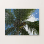 Looking Up to Coconut Palm Tree Tropical Nature Jigsaw Puzzle