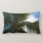 Looking Up to Coconut Palm Tree Tropical Nature Lumbar Pillow