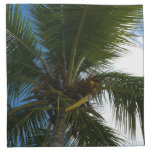 Looking Up to Coconut Palm Tree Tropical Nature Napkin
