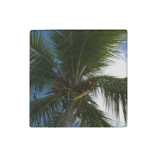 Looking Up to Coconut Palm Tropical Beach Stone Magnet