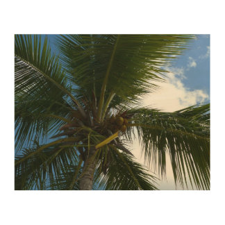 Looking Up to Coconut Palm Tropical Beach Wood Wall Art