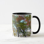 Looking Up to Fall Leaves Beautiful Autumn Photo Mug