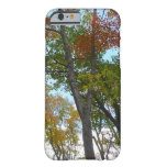 Looking Up to Fall Leaves I Colorful Fall Foliage Barely There iPhone 6 Case