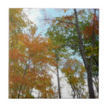 Looking Up to Fall Leaves I Colorful Fall Foliage Ceramic Tile