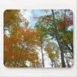 Looking Up to Fall Leaves I Colorful Fall Foliage Mouse Pad