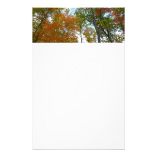 Looking Up to Fall Leaves I Colorful Fall Foliage Stationery