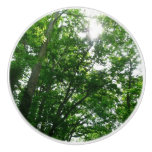 Looking Up to Summer Trees Ceramic Knob