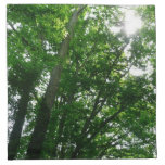 Looking Up to Summer Trees Cloth Napkin