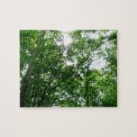 Looking Up to Summer Trees Jigsaw Puzzle
