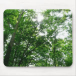 Looking Up to Summer Trees Mouse Pad