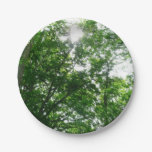 Looking Up to Summer Trees Paper Plate