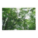 Looking Up to Summer Trees Placemat