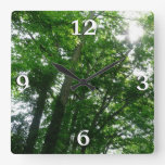 Looking Up to Summer Trees Square Wall Clock