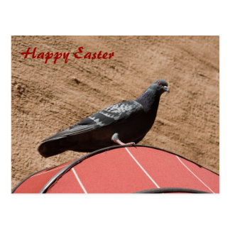 Lookout pigeon Happy Easter postcard