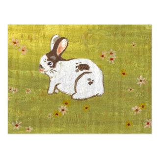 looks_like_rabbit postal