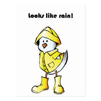 Looks Like Rain Duck Chicken Cartoon Postcards