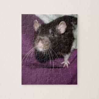 loomis rat puzzle with tin