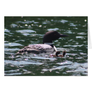 Loon and Two Babies Card