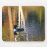 Loon at sunrise mouse pad