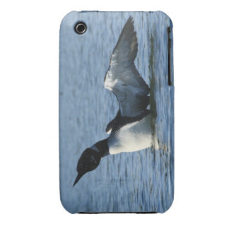 Loon iPhone Case iPhone 3 Covers