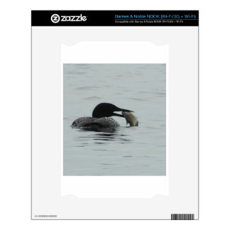 loon.JPG Skins For The NOOK