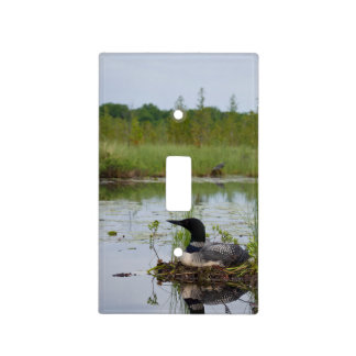 Loon on Nest 2 Light Switch Plates