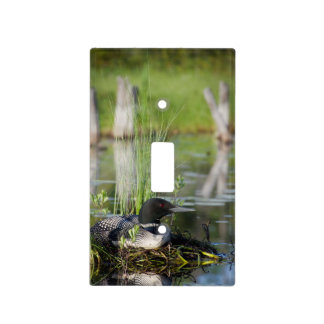 Loon on Nest Switch Plate Cover