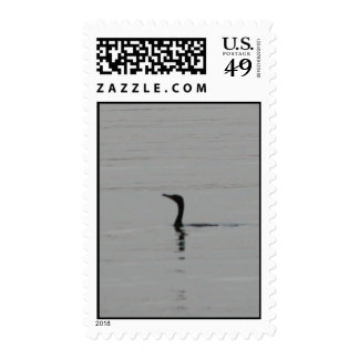 Loon on the Lake Stamp