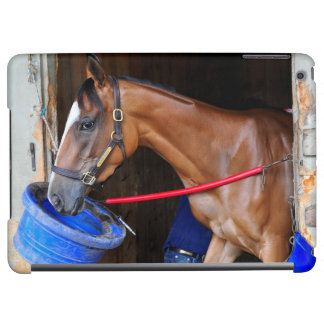 Loon River at Saratoga Case For iPad Air
